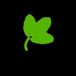 Burgeon EnvironMental Solutions
