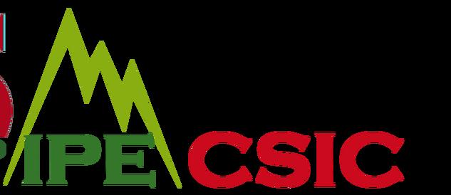 ipe-csic logo
